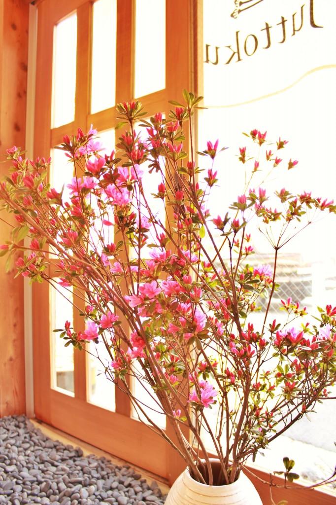 写真 2014-04-11 14 15 33